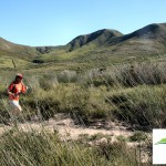 The Fynbos Trail Run